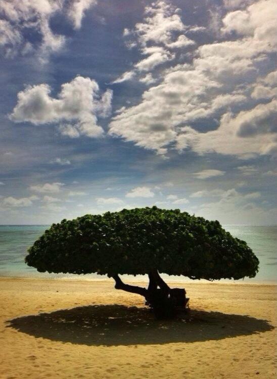 Aitutaki: Ahhhhh, paradise.