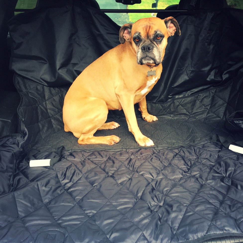 INNX Waterproof Quilted Dog Auto Car Seat Cover